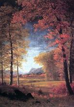 Autumn in  America, Oneida County, New York