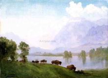 Buffalo Country - Albert Bierstadt