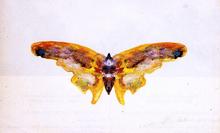 The Butterfly - Albert Bierstadt