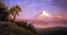 USA Paintings