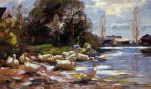 Ducks on a Riverbank on a Sunny Afternoon - Alexander Koester