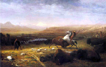 Last of the Buffalo - Alfred Jacob Miller
