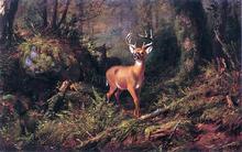 Adirondacks - Arthur Fitzwilliam Tait