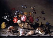 Still-Life of Flowers, Shells, and Insects - Balthasar Van der Ast