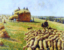 Flock of Sheep in a Field After the Harvest - Camille Pissarro