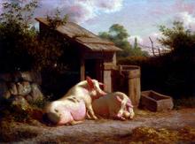 Pigs Paintings