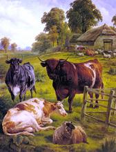 A Pedigree Bull - Charles Jones