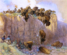 Driving Buffalo Over the Cliff - Charles Marion Russell