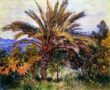 A Palm Tree at Bordighera - Claude Oscar Monet