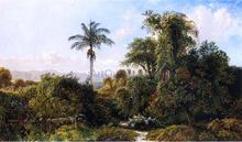 Cuban Landscape - Edmund Darch Lewis