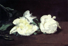 Branch of White Peonies, with Pruning Shears - Edouard Manet