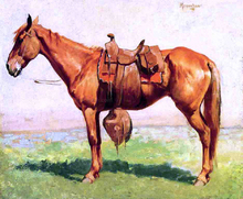 A Cow Pony - Frederic Remington