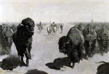 Lane through the Buffalo Herd - Frederic Remington