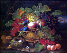 Still Life with Fruit, Butterflies and Bird's Nest - George Forster