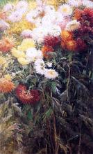 Chrysanthemums, Garden at Petit Gennevilliers - Gustave Caillebotte