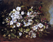 Flowering Apple Tree Branch - Gustave Courbet
