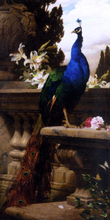 A Peacock in a Classical Landscape with Lillies and Roses - Gyula Juluis De Benczur
