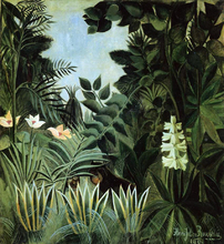 Rainforests and Jungles Paintings