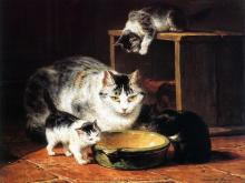 Name Given is Aprole Douner - Henriette Ronner-Knip