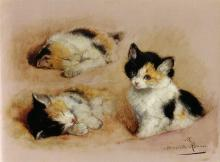 Studies of an Awakening Kitten - Henriette Ronner-Knip