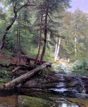 A Bear Approaching a Forest Stream - Herman Herzog