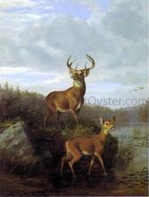 Deer - Hyppolite Sebron