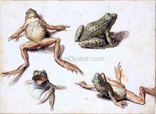 Four Studies of Frogs - Jacob De II Gheyn