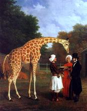 Giraffes Paintings