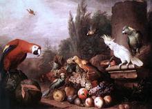 Still-life with Birds - Jakab Bogdany