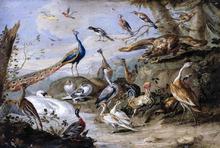 Birds on a Riverbank - Jan Van I Kessel