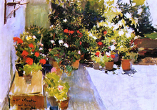 A Rooftop with Flowers