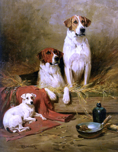 Foxhounds and a Terrier - John Emms