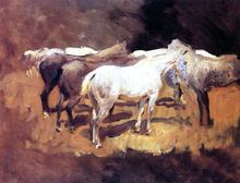 Horses at Palma