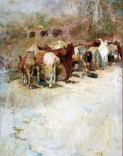 El Camino - Jose Navarro Llorens