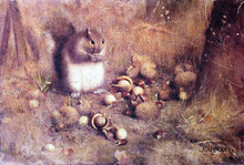 A Squirrel with Nuts - Joseph Decker