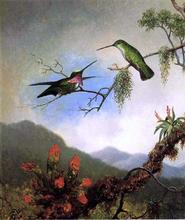 Amethyst Hummingbirds - Martin Johnson Heade