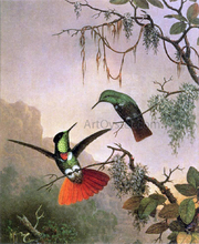 Two Hooded Visorbearer Hummingbirds - Martin Johnson Heade