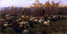 A Flock of Goats - Nicolo Cannicci