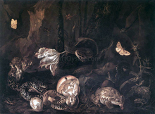 Still-Life with Insects and Amphibians - Otto Marseus Van Schrieck