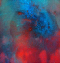 Blue Red Green Abstract - Our Original Collection