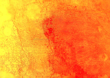 Paintings for sale - Yellow and Orange in Harmony - Our Original Collection