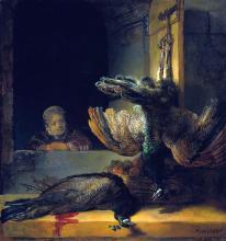 Dead peacocks - Rembrandt Van Rijn