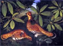 Two Ruffed Grouse - Rubens Peale