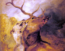 Stag and Hound
