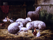 Sheep, Roosters and Chickens in a Barn - Theo Van Sluys