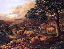 Four Elk - II Titian Ramsey Peale