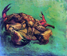 Crab on Its Back - Vincent Van Gogh