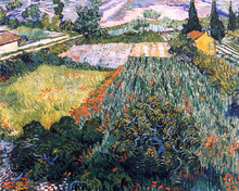 A Field with Poppies - Vincent Van Gogh