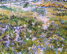 Meadow in the Garden of Saint-Paul Hospital - Vincent Van Gogh