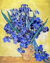 A Still Life with Irises